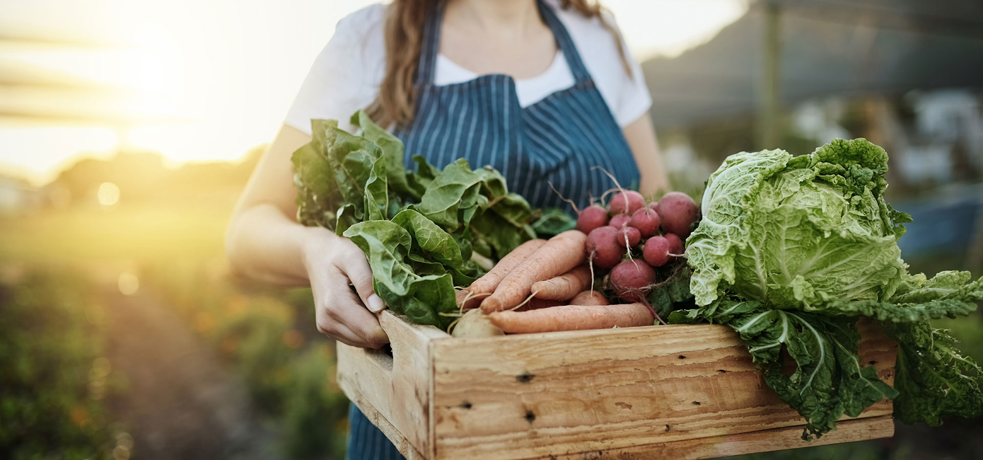 3-reasons-to-shop-local-this-gardening-season