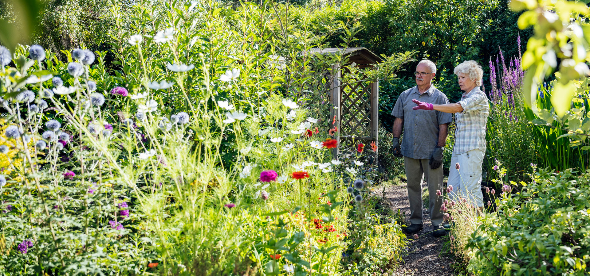 5 Steps for Planning Your New Garden